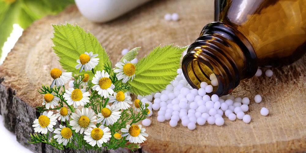 Potenzstörungen Homöopathie