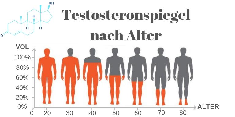 Testosteronspiegel beim Mann